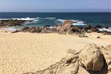 Shipwrecks Beach Los Cabos